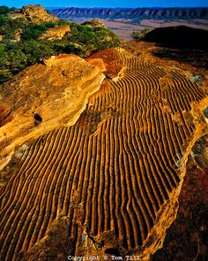 """Ripple Rock"" Pattern in Sandstone, Flinders Ranges National Park, South Australia"