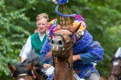Johannisreiten 2017 in Casel (oaarnee) Tags: johannisreitenincasel de deutschland johannisreiten kornblume fest reiten sorben brauchtum casel brandenburg