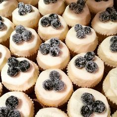 One of our favorite recipes from our Flour+Heart event last June- Sugar Bakeshop's Citrus Cupcakes flavored with orange and grapefruit and topped with sugared blueberries.