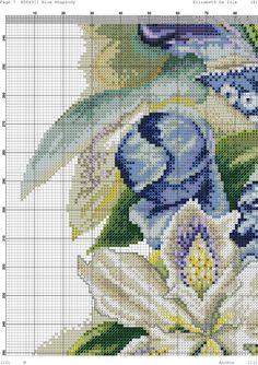 Кращих зображень дошки «Квіти»  868  95e3d24726f87