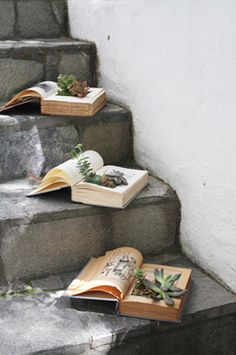 how to diy book succulent planter great for library or book lovers event!  Would look awesome on stairs by the river bridge at the park picnic decoration