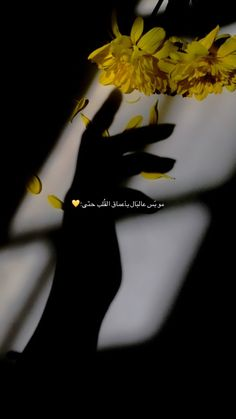 Iphone Wallpaper Quotes Love, Phone Wallpaper Images, Islamic Quotes Wallpaper, Wallpapers, One Word Quotes, Bad Quotes, Arabic Tattoo Quotes, Funny Arabic Quotes, Love Smile Quotes