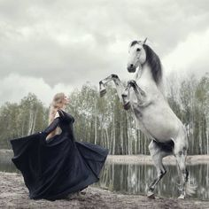 Lovey Lady, Beautiful Horse.