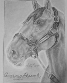 Happy Birthday American Pharoah!  Already 5 years old.  I remember watching him almost two years ago edging out Dortmund in the Derby, romping down the stretch for an easy, muddy Preakness win, and conquering in the Belmont.  He made great horses look good, Pharoah truly is the King of modern horse racing.🐴🏇🏆👑  Btw, I drew this in November.  #americanpharoah #horseracing #horsesofinstagram #happybirthday