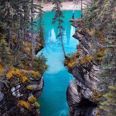 Водопад Атабаска, Канада #отпуск #отдых #туристическийжурнал