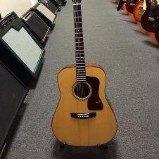 Guild D50 BlueGrass Special!   #guild #guildd50 #bluegrass #acoustic #acousticguitars #guitar #guitars #guitarist #guitarstore Guitar Store, Guitars For Sale, Acoustic Guitar, Music Instruments, Musical Instruments, Acoustic Guitars