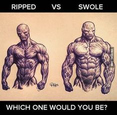 would go for ripped . if I wasn't a lazy motherf*cker! What would you choose? I would go for ripped . if I wasn't a lazy motherf*cker! What would you choose?I would go for ripped . if I wasn't a lazy motherf*cker! What would you choose? Fitness Workouts, Ab Workout Men, Fitness Abs, Biceps Workout, Fitness Quotes, Gym Humor, Workout Humor, Bodybuilding Workouts, Bodybuilding Motivation