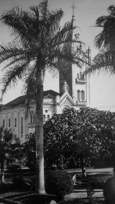 Igreja Matriz do Sr Bom Jesus, padroeiro da cidade de Monte Alto/SP.