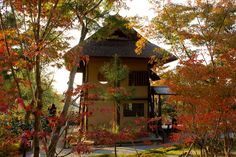"This is a teahouse in Kodai-ji temple in Higashiyama-ku, Kyoto! They were designed by Sen-no-Rikyu, a famous 16th century tea master.    Here a little more about: Sen no Rikyū,also known simply as Sen Rikyū), is considered the historical figure with the most profound influence on chanoyu, the Japanese ""Way of Tea"", particularly the tradition of wabi-cha. He was also the first to emphasise several key aspects of the ceremony, including rustic simplicity, directness of approach and honesty of…"