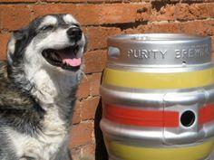 Firkin guard dog. Purity Brewing Co. (Warwickshire, U.K.) http://www.puritybrewing.com