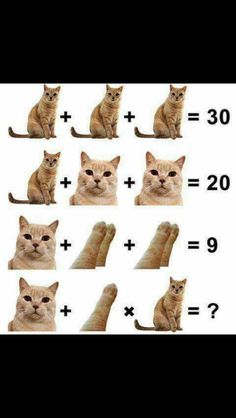 Apr 2019 - Systems of equations through picture puzzles. See more ideas about Maths puzzles, Picture puzzles and Math challenge. Solving Algebraic Equations, Algebra Equations, Maths Algebra, Math Puzzles Brain Teasers, Maths Puzzles, Fun Math Activities, Math Games, Math Talk, Math Challenge