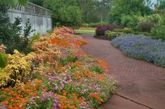 Photo Flower beds in Mercer Arboretum and Botanical Gardens. Great Places, Places To See, Beautiful Places, Flower Farm, Flower Beds, Mercer Arboretum, Flower Garden Design, Organic Gardening, Flower Gardening
