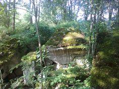 Większy bunkier w lesie na starym cmentarzu w Staświnach jadąc drogą powiatową z giżycka chowa się między drzewami. Niedaleko groby.
