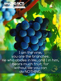 Scripture Pictures | Amazing Facts