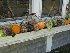 fall window box ideas - Bing Images
