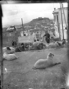 Athens History, Greek History, Old Photos, Vintage Photos, Athens Greece, Back In The Day, Historical Photos, Santorini, The Neighbourhood