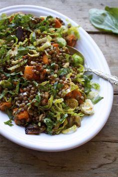 FRENCH LENTIL AND VEGETABLE SALAD http://inpursuitofmore.com/2013/05/10/virtual-vegan-potluck-french-lentil-vegetable-salad/#more-13412