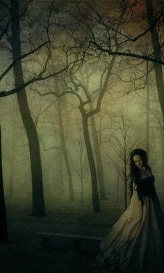 """""""Every fairy tale has a bloody lining. Every one has teeth and claws."""" (Alice Hoffman)- cool quote"""