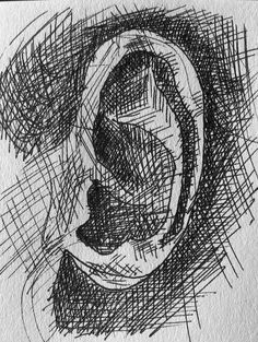 The cross-hatching shows the shadows and the lack of creates a 3D effect showing where the cartilage rises