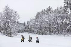 Maine Winter, Visit Maine, Winter Activities, Wilderness, Climbing, Things To Do, Trail, Snow, Adventure