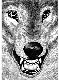 Jaguarshoes Collective Arran Gregory 'Wolf' print - The old shoreditch station