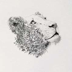 White Lioness - Print Framed - For the Love of Wildlife