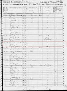 Individual family history