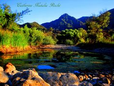 Malibu Creek in Summer by Catherine Natalia Roché by Mooncrater Nature Photography Tips, Photography Pics, Artistic Photography, Wildlife Photography, Landscape Photography, Santa Monica Mountains, Water Life, Cool Photos, Just For You