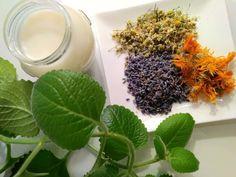 Mast z rýmovníku (recept) - pomocník při rýmě a nachlazení Plants, Fitness, Aromatherapy, Diet, Syrup, Plant, Planets