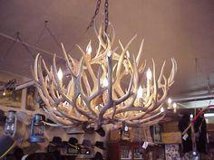 Deer Antler Chandelier Incredible 12 Lights   Ruxton's Trading Post