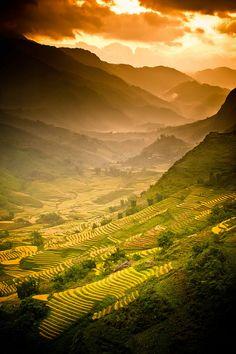 """A Land of Wonder"" Vietnam Rice Fields. Photography by Dan Ballard, via Flickr"
