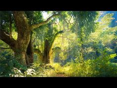 10 Hours of Relaxing Piano Music for Stress Relief, Sleep, Study, Relax, Meditation (Kyle) - YouTube Calming Songs, Relaxing Music, Relaxation Room, Piano Music, Stress Relief, Meditation, Sleep, Study, Reyes