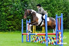 Show-Jumping #horses<3