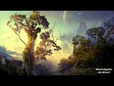 Thomas Bergersen - The Hidden Rainforest (2011) - YouTube