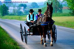 Amish Youth off to a Singing~ Sarah's Country Kitchen ~