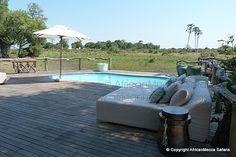 Mombo Camp - Moremi, Botswana Shady Tree, Albums, Safari, Tent, Wildlife, Southern, Africa, Camping, Patio