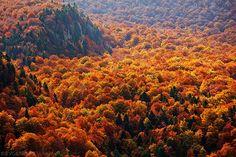 Autumn Ocean, Bulgaria ~