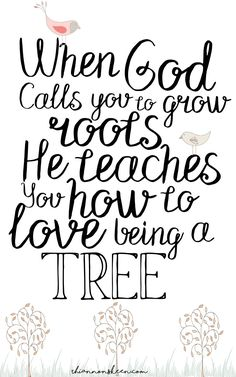 I hated the idea of roots. I did not want to stay put. That is until God called me to grow roots and then I realized why they were so important.