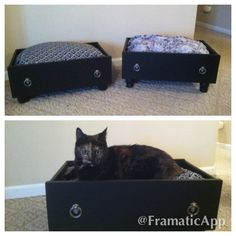 Upscale pet bed. Made from repurposed dresser drawer.