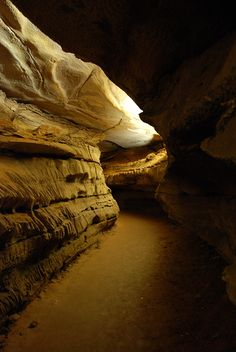 Mammoth Cave - Grand Avenue, Kentucky = been