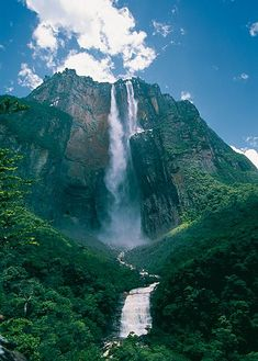 The majestic Angel waterfall from the ground perspective at Canaima National Park, Venezuela