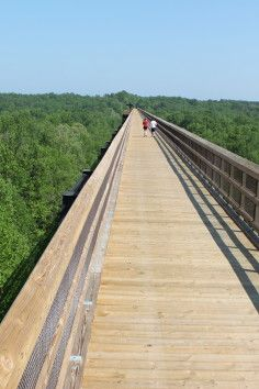 High Bridge Trail State Park is a Community Park in Farmville. Plan your road trip to High Bridge Trail State Park in VA with Roadtrippers. Bike Trails, Hiking Trails, Virginie Usa, High Bridge Trail, State Parks, Hiking In Virginia, Virginia Beach, West Virginia, Virginia Is For Lovers