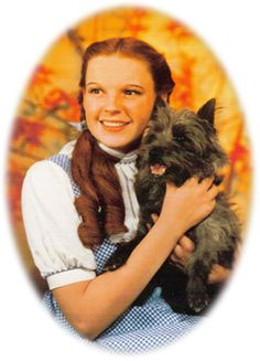 "Judy Garland. Dorothy Gale. Following the release of ""The Wizard of Oz,"" the former child star Judy Garland (1922-1969) went on to a celebrated international career as an actress (Oscar-nominated for 1954's ""A Star Is Born"" and ""1961's ""Judgement at Nuremberg"") and singer — she became a cornerstone of MGM musicals and a beloved figure on the concert stage and television (""The Judy Garland Show"")."