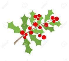 holly christmas - Google Search