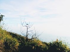 Good view from Mountain Slamet in Central Java, Indonesia