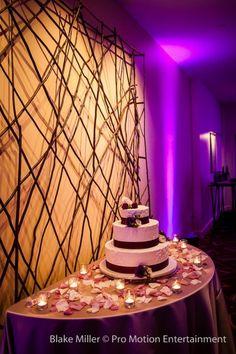 Cake & Uplighting at Estancia La Jolla Wedding.