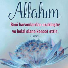 Allahım! Beni haramlardan uzaklaştır ve helal olana kanaat ettir. (Tirmizi)  #haram #helal #dua #amin #hadisler #kanaat #hayırlıcumalar #ilmisuffa