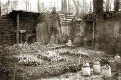 Wartime garden