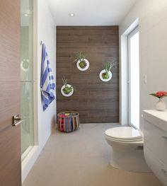 grünes badezimmer verschönern inspiration pic oder bdacbabbeb plants in bathroom staghorn fern