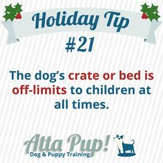 Atta Pup Training Blog: Holiday Tip #21-------   Never approach or pester a dog in their bed or crate. Prohibit children from playing on or in a dog's bed or crate, even if it is unoccupied. Dogs deserve to feel safe in their safe spaces!